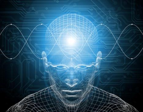 Развитие внимания, мозг, человек