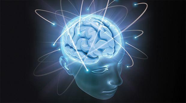 Техника развития мозга, развитие мозга, мозг