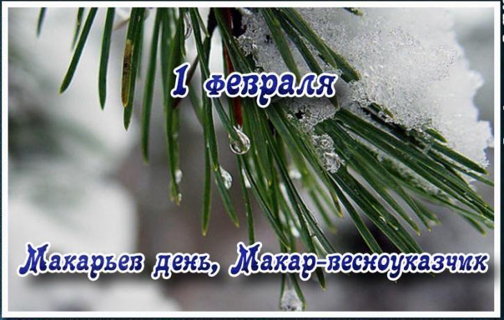 Какие праздники отмечают в феврале - 1 февраля Макарьев день