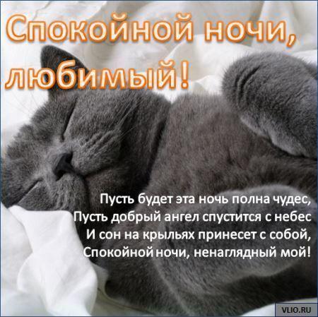 Сладких снов девушке