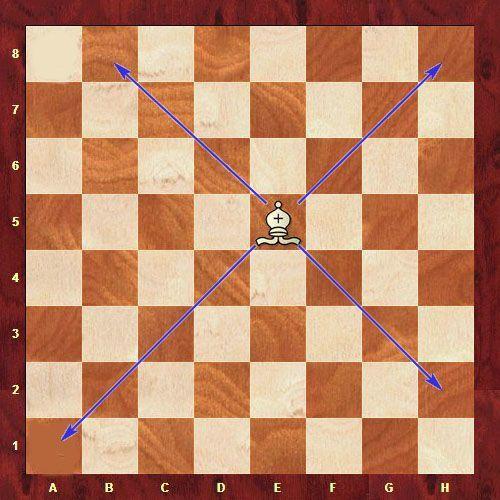 Шахматные фигуры, шахматы, слон