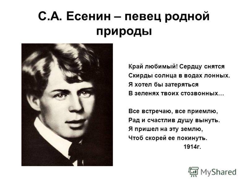 Сергей Есенин - певец родной природы. Стих о природе.