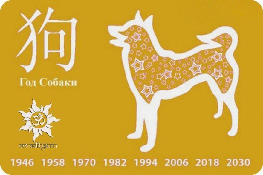 2018 - год желтой собаки