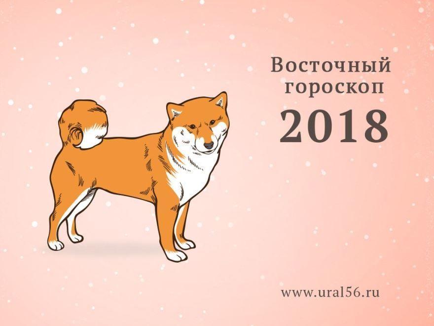Чей год по календарю? Год желтой собаки