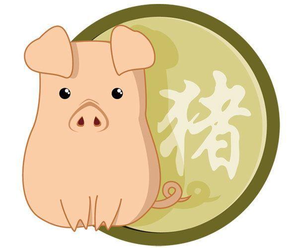 2019 год какого животного? Земляной свиньи