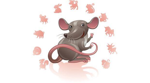 2020 год какого животного? Белой крысы