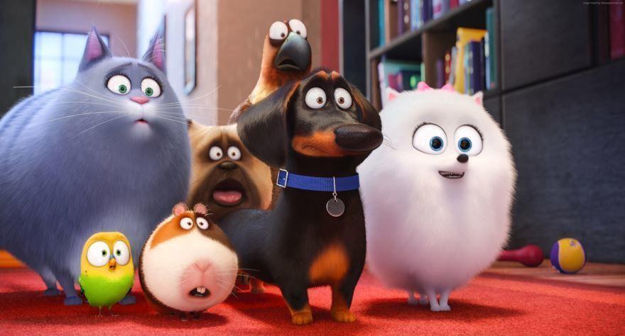 Мультфильм про животных - тайная жизнь домашних животных