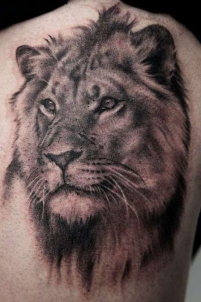 тату на спину - лев, для мужчин