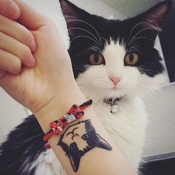 Тату кошки на запястье