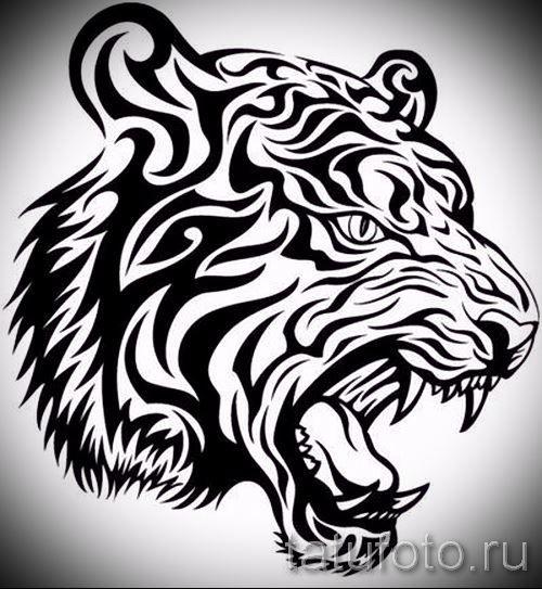 Мужское тату на лопатку - эскиз тигра