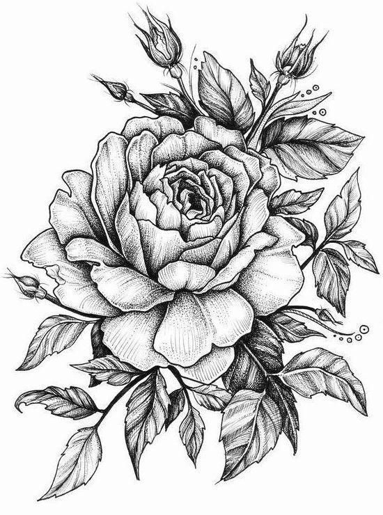 Эскиз тату цветов в черном цвете