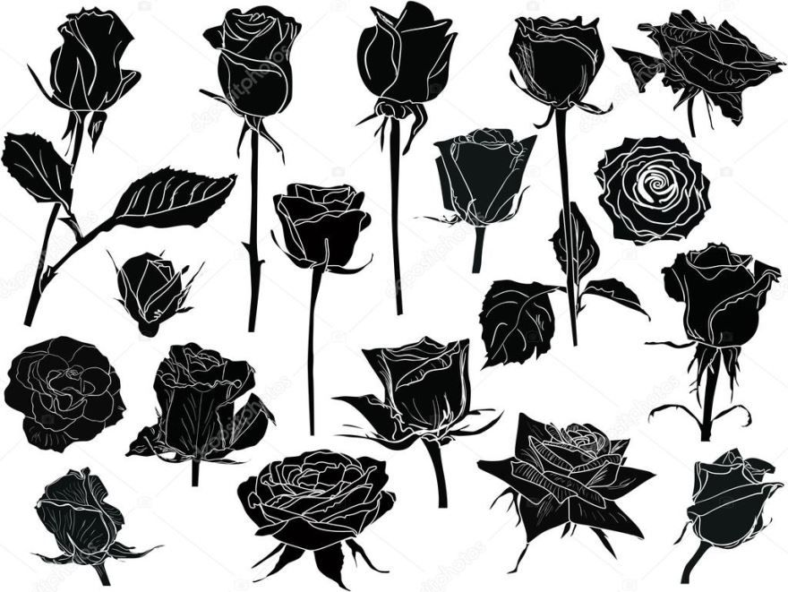 Тату черных роз, эскизы для девушек