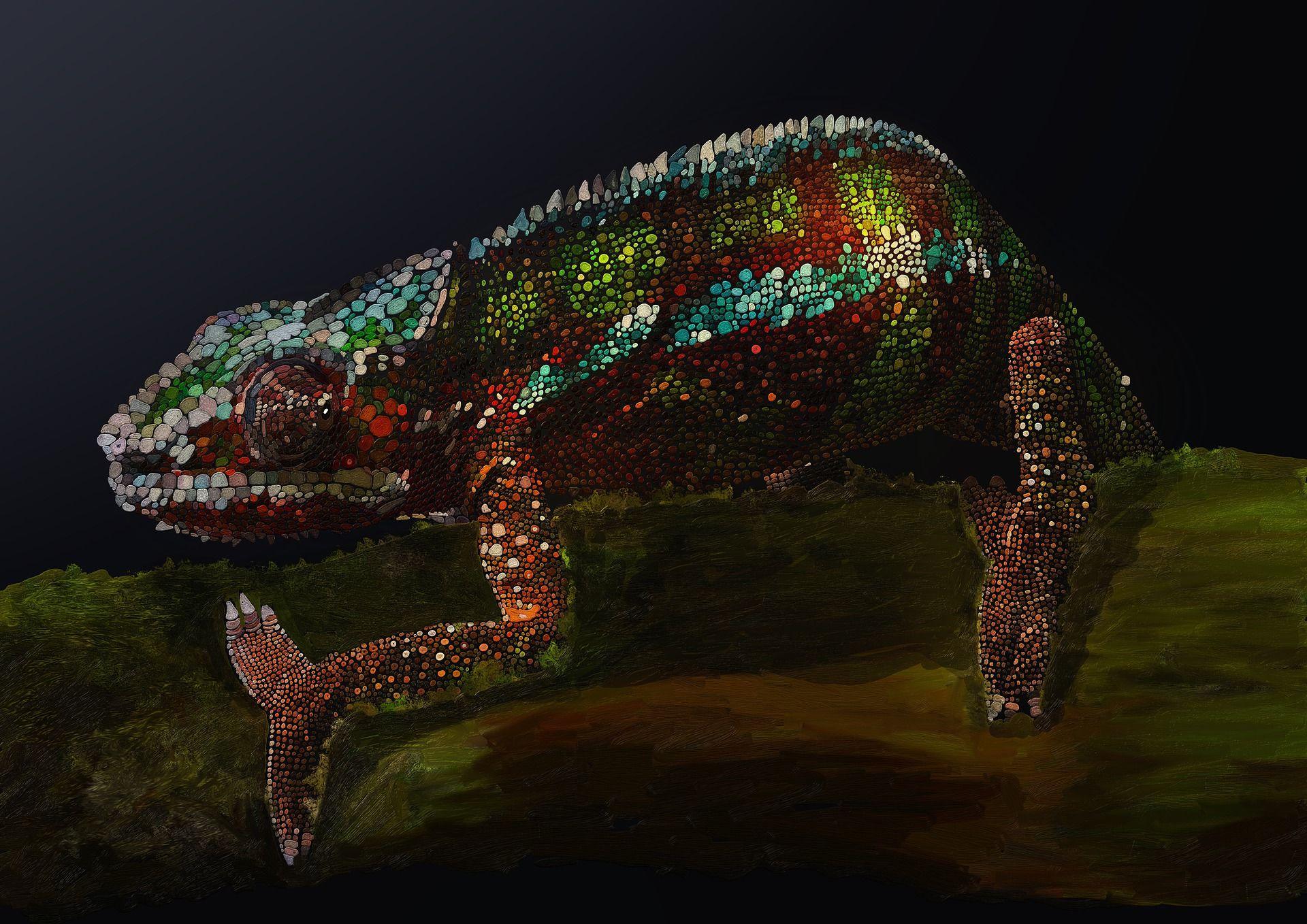 Смотреть интересное фото необычного хамелиона бесплатно