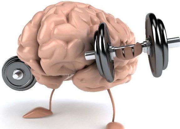 Интеллектуальные способности развитие память внимание упражнение тренировка