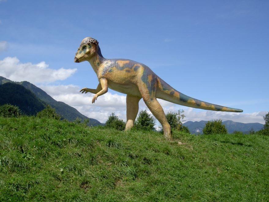 Динозавры фото в хорошем качестве