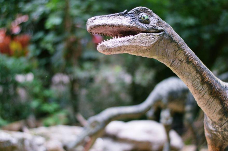 Смотреть фото динозавров бесплатно