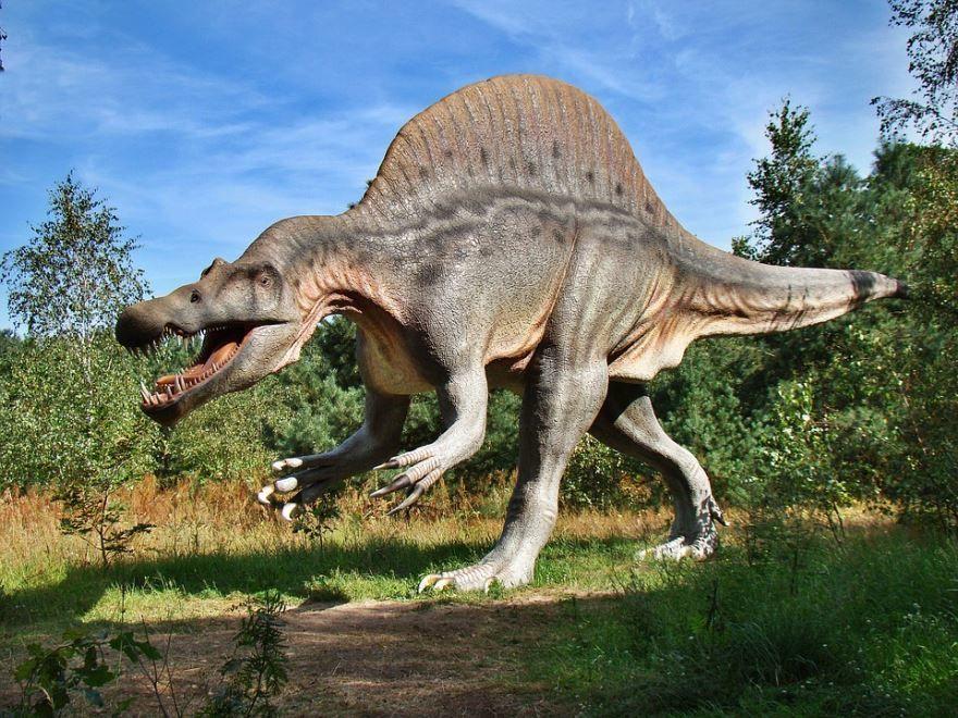 Фото хищных динозавров