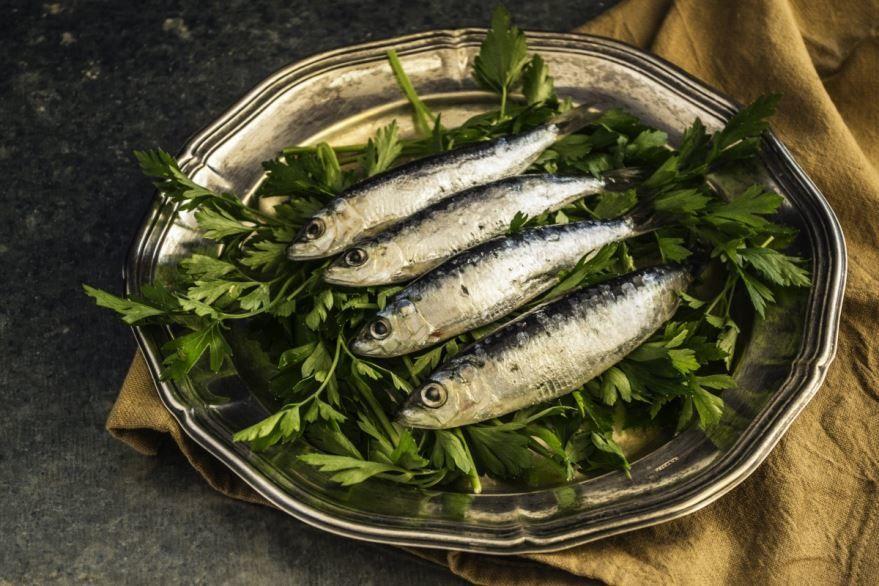 Фотографии вкусной рыбы – сельди