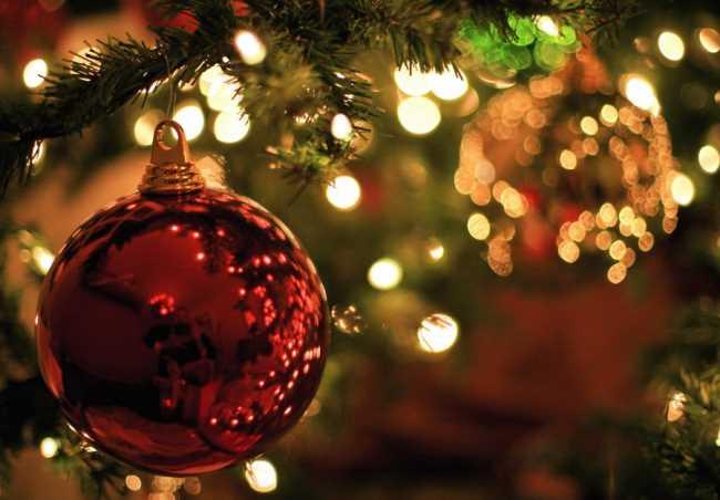 Красный шар на новогодней елке крупным планом, позади огоньки и веточки ели