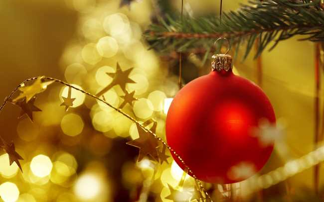 Красный шар висит на ветке елки