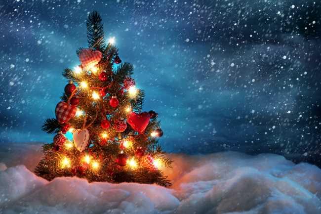 Елка на снегу с красивыми гирляндами горит