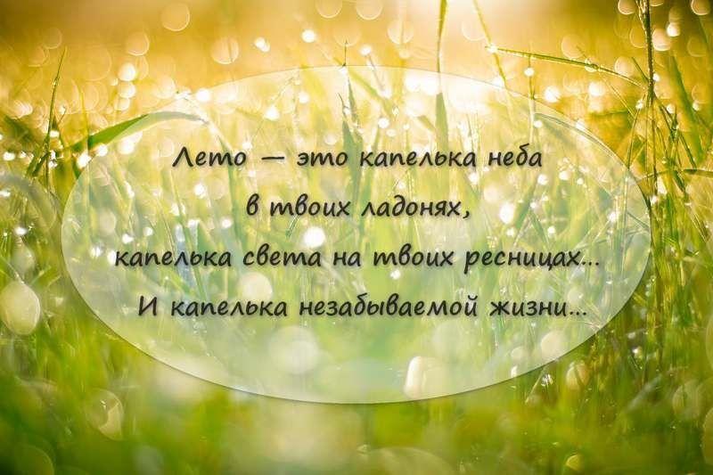 Красивая и короткая цитата про лето