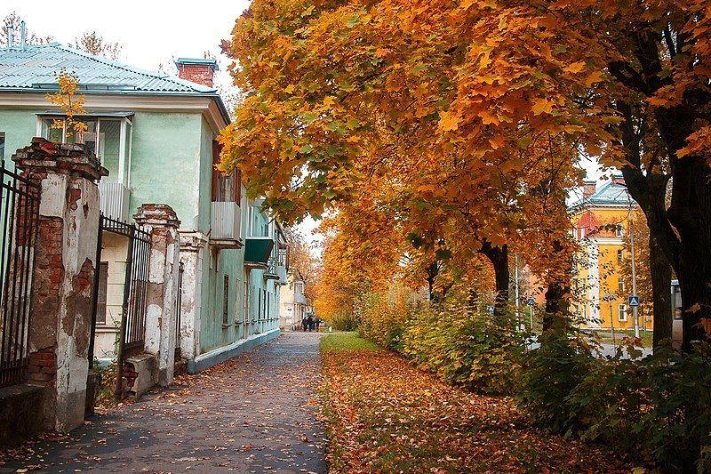 Смотреть бесплатно улица Советская город Глазов