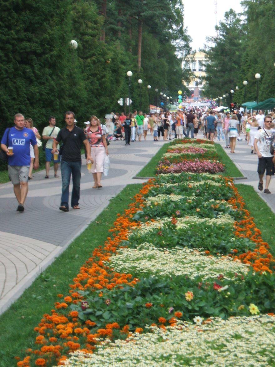Смотреть лучшее фото парк в городе Зеленогорск