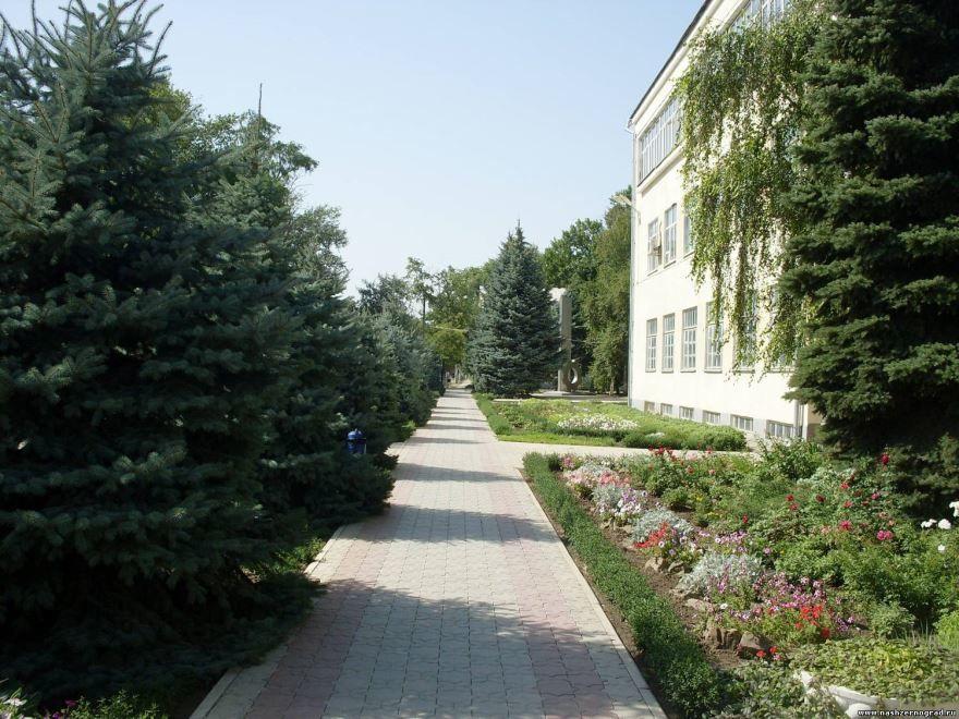 Смотреть фото города Зерноград Ростовская область бесплатно