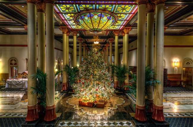 На Новогоднюю елку повесили 16 шаров