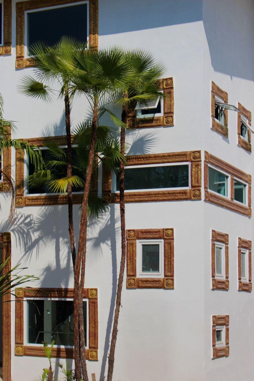 Купить фотографии пальмы? Скачайте бесплатно