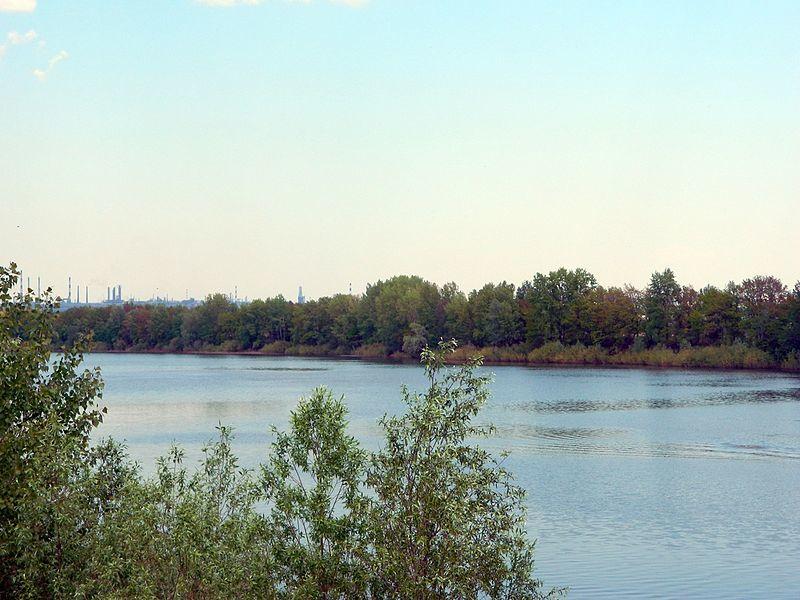 Сосновое озеро село Алексеевка Уфимский район