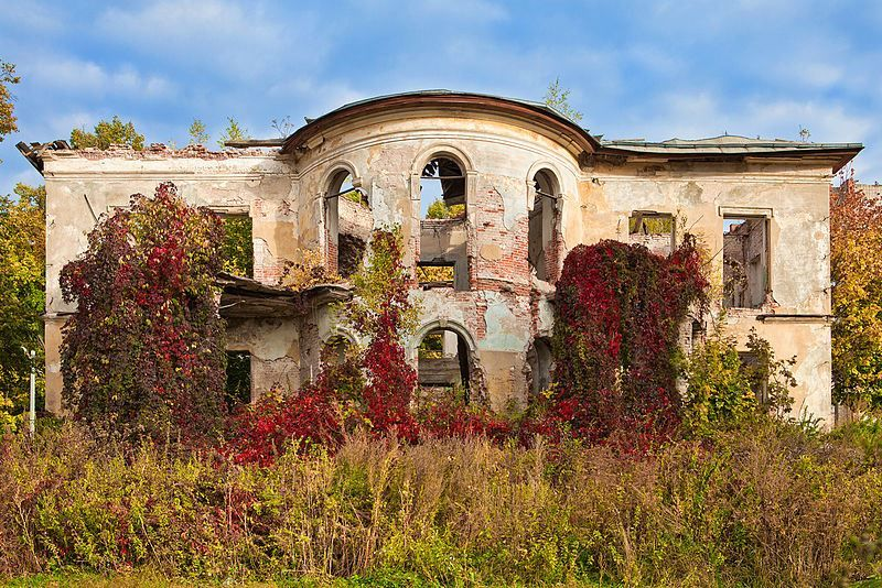 Усадьба Петровское город Алексин