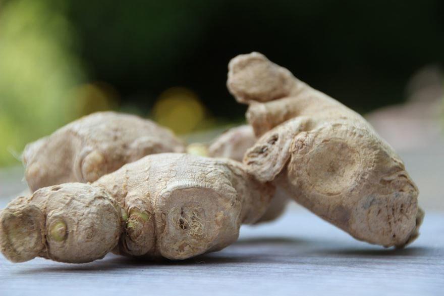 Фото корня имбиря, обладающего полезными свойствами