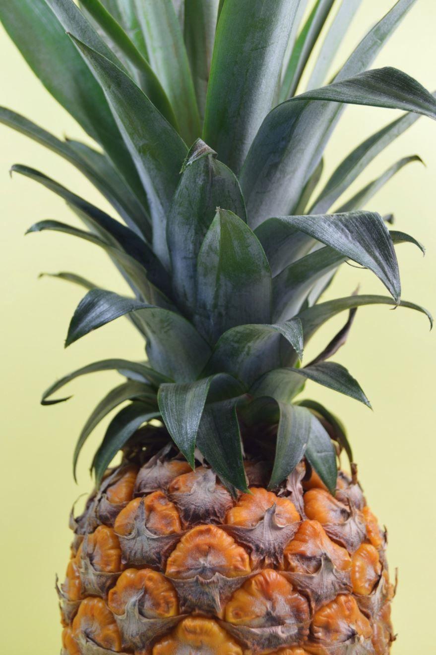 Купить фото фруктов ананасов? Скачайте бесплатно у нас