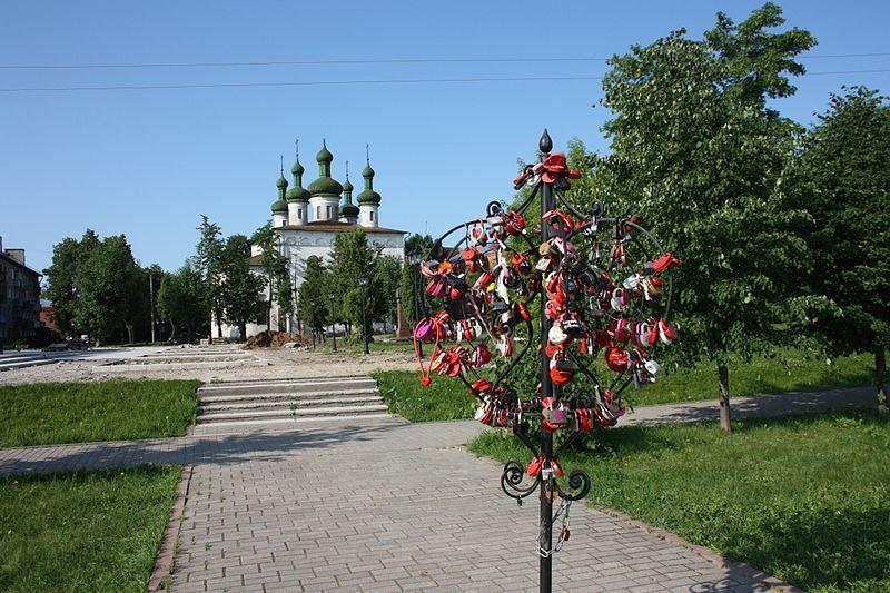 Дерево любви город Кинешма 2019