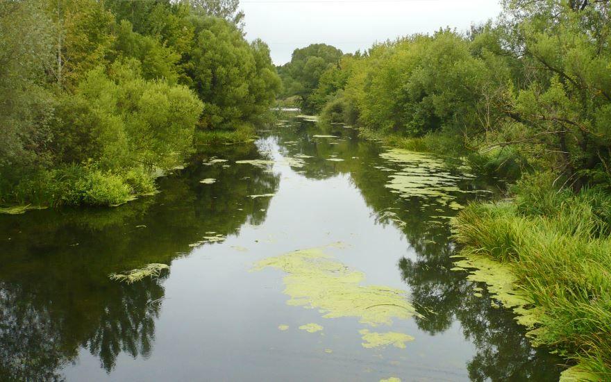 Смотреть лучшее фото река Короча в городе Короча в хорошем качестве