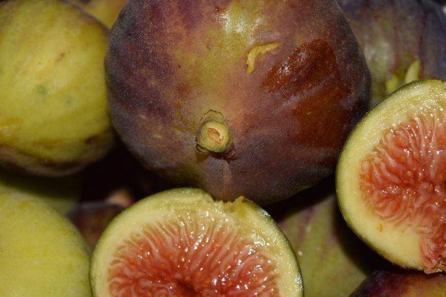Купить фото ягод инжира? Скачайте бесплатно