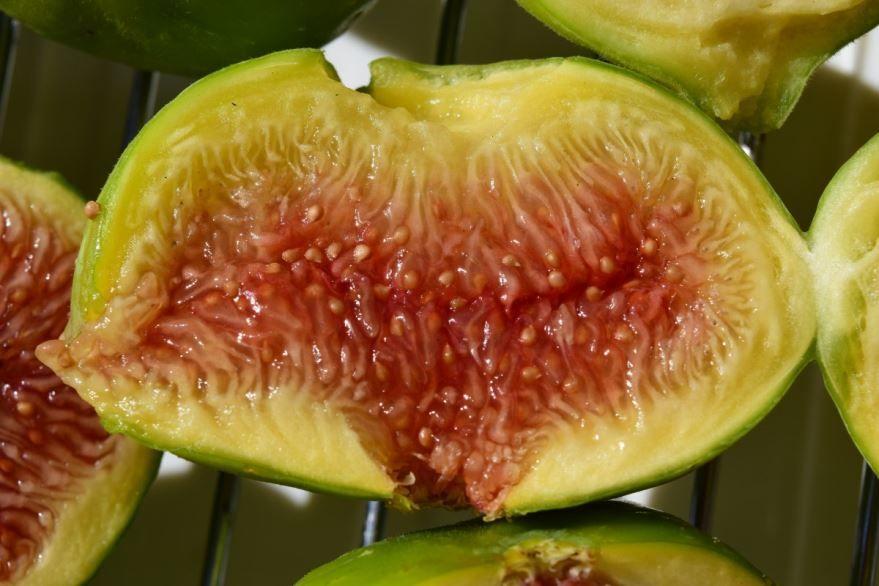 Вкусные ягоды инжира для вкусных рецептов, бесплатные фото