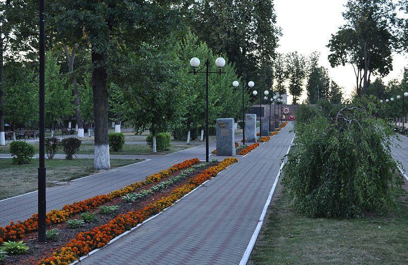 Аллея Победы город Можайск