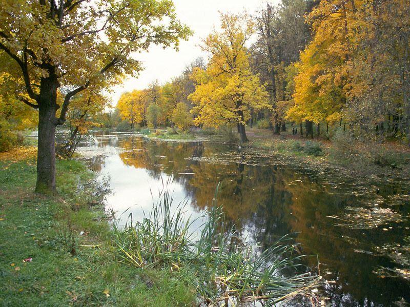 Смотреть красивое фото парк города Красногорска