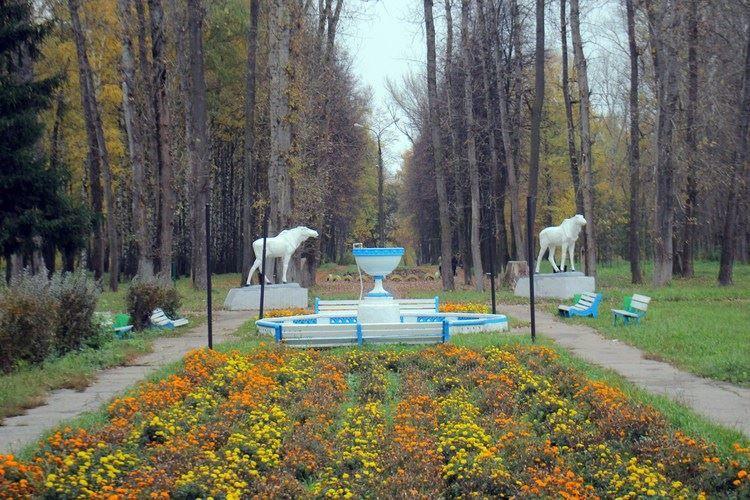 Скачать онлайн бесплатно лучшее фото города Лысково цветник перед фонтаном в парке