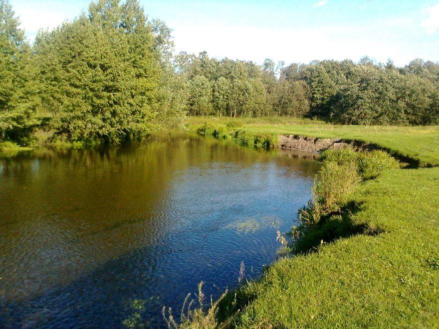 Смотреть красивое фото река Нерехта в хорошем качестве