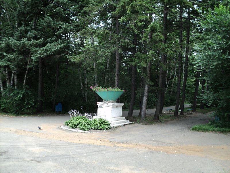 Смотреть красивое фото городской парк город Партизанск в хорошем качестве