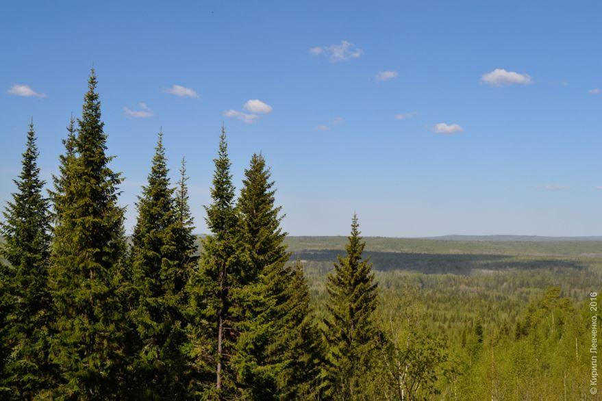 Смотреть красивое фото гора Пихтовая город Полевской