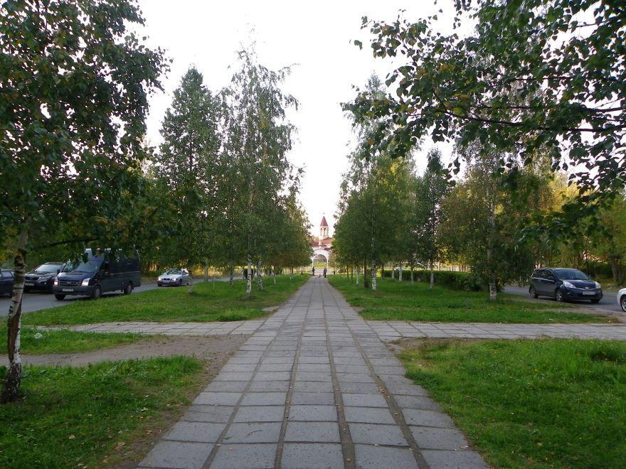 Скачать онлайн бесплатно лучшее фото улица Березовая аллея города Петрозаводска в хорошем качестве