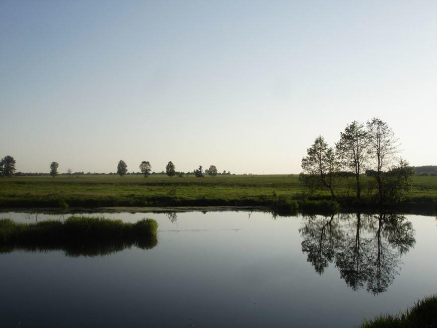 Смотреть красивое фото река Судогда 2019 в хорошем качестве