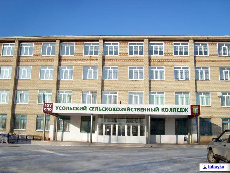 Сельскохозяйственный колледж город Усолье