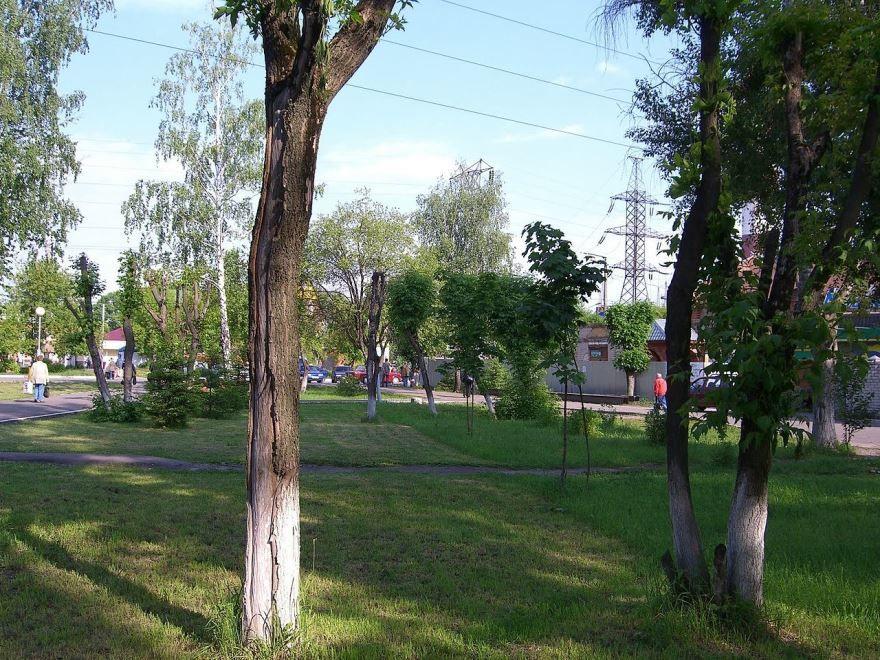 Скачать онлайн бесплатно лучшее фото города Электрогорска в хорошем качестве