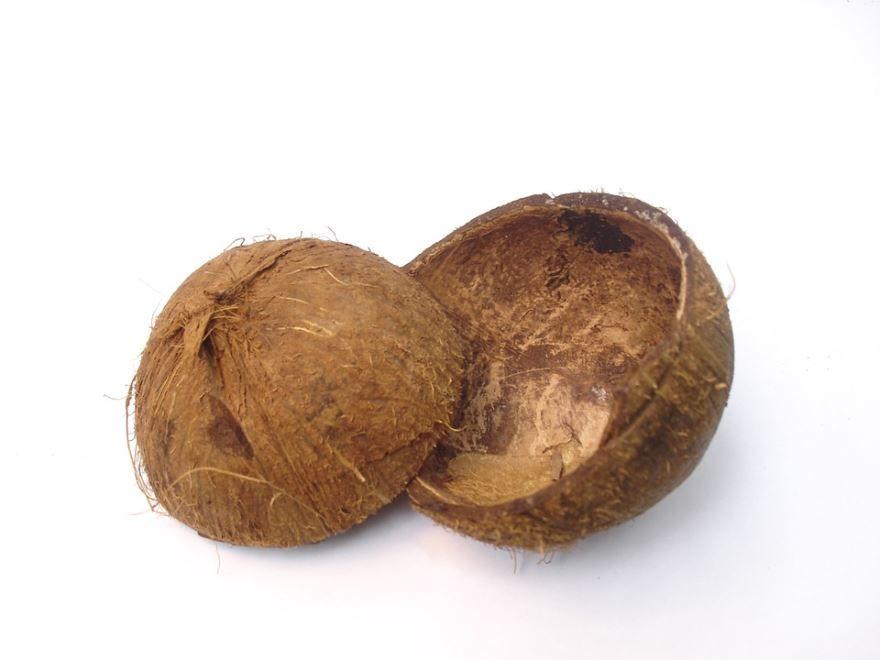 Фото кокоса в домашних условиях в хорошем качестве